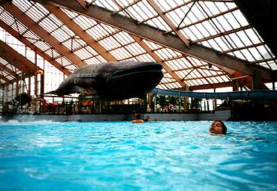 Aquaboulevard for Piscine baleine